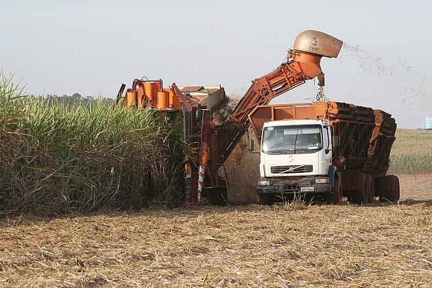 Moagem da cana-de-açúcar diminui, mas produção do etanol aumenta