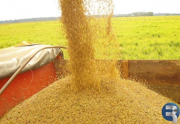 Em janeiro, exportações de Sidrolândia cresceram 186,25%