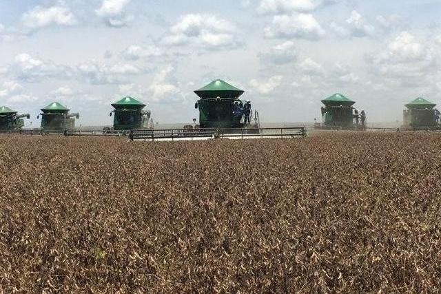 Estado produzirá mais de 19,5 milhões de toneladas de grãos nesta safra