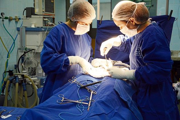 Nova edição da Caravana da Saúde vai focar em cirurgias eletivas