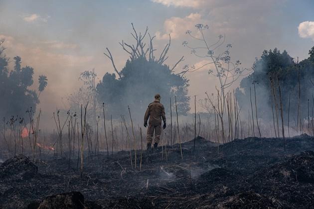 Pantanal registra 334% mais focos de queimadas em 2019, ano com menos chuvas e intensa onda de calor na região