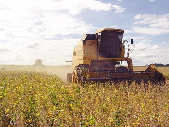 Clima derruba em 5% produção de grãos no Estado, aponta pesquisa da Conab
