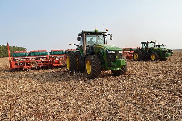 Plantio da nova safra de soja ultrapassa a marca dos 2 milhões de hectares