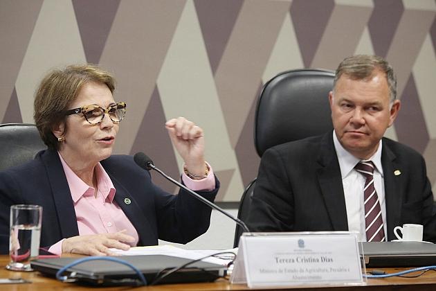 Tereza Cristina: MP garante segurança para regularização fundiária