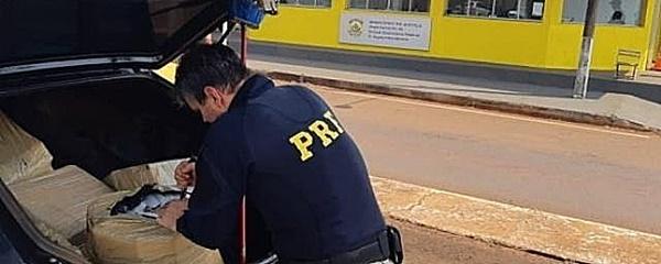 Traficante causa acidente em rodovia e abandona 462 quilos de maconha