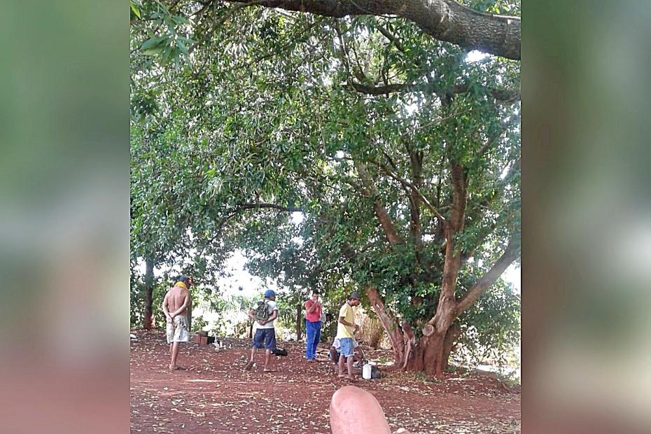 Pé de ingá é novo motivo de discórdia entre moradores da Comunidade Jatobá