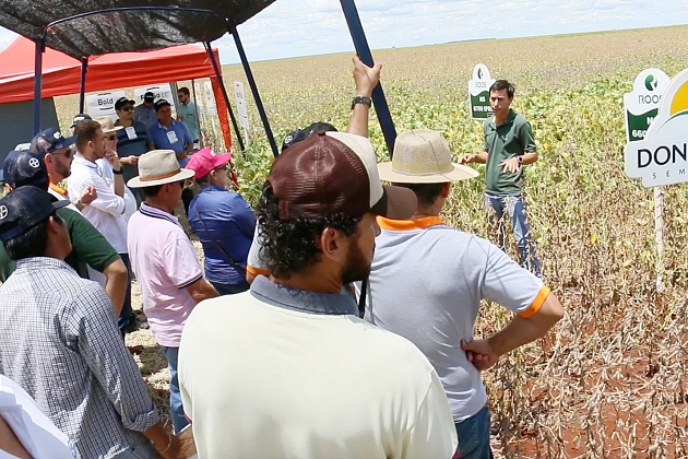 Empresa Cultivar realiza dia de campo pelo quarto ano consecutivo em Sidrolândia