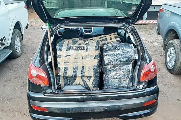 PM apreende quase 260 quilos de maconha deixados em lavoura de milho
