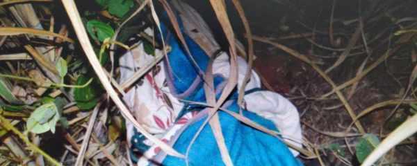 Paranaense foi morto a pauladas e teve corpo jogado em canavial