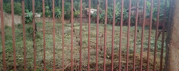 Depois de repercussão de matéria do RN, proprietário limpa terrenos no São Bento
