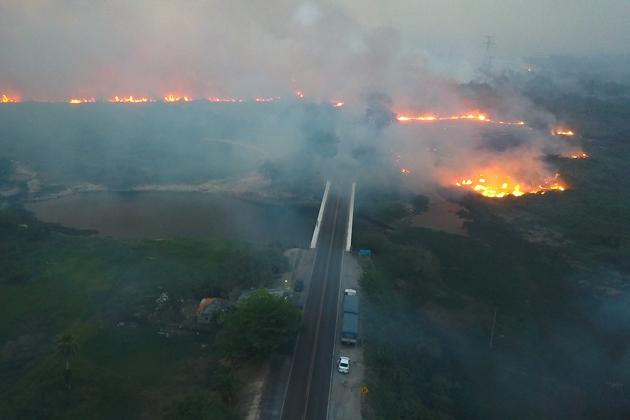 Incêndios destroem 50 mil hectares e cortam energia e internet