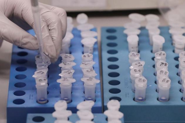 Número de mortes por coronavírus chega a 376 no MS