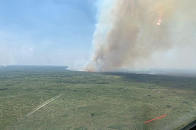 Incêndios no Pantanal levam cidades de MS ao topo de ranking de focos