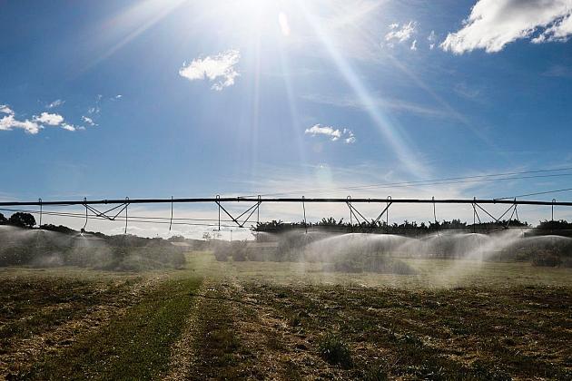 Valor da produção agropecuária de 2019 atinge recorde de R$ 630,9 bi