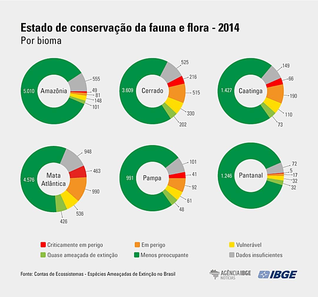Cerrado é 2º mais afetado pela ação humana, com quase 20% das espécies ameaçadas