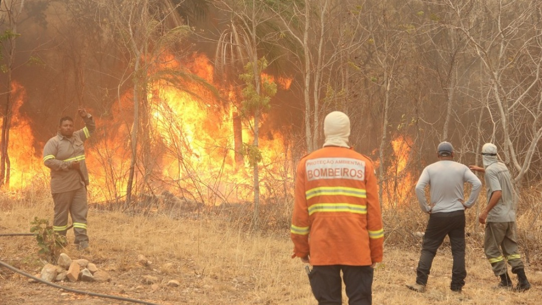 Ministério se antecipa e decreta estado de emergência ambiental
