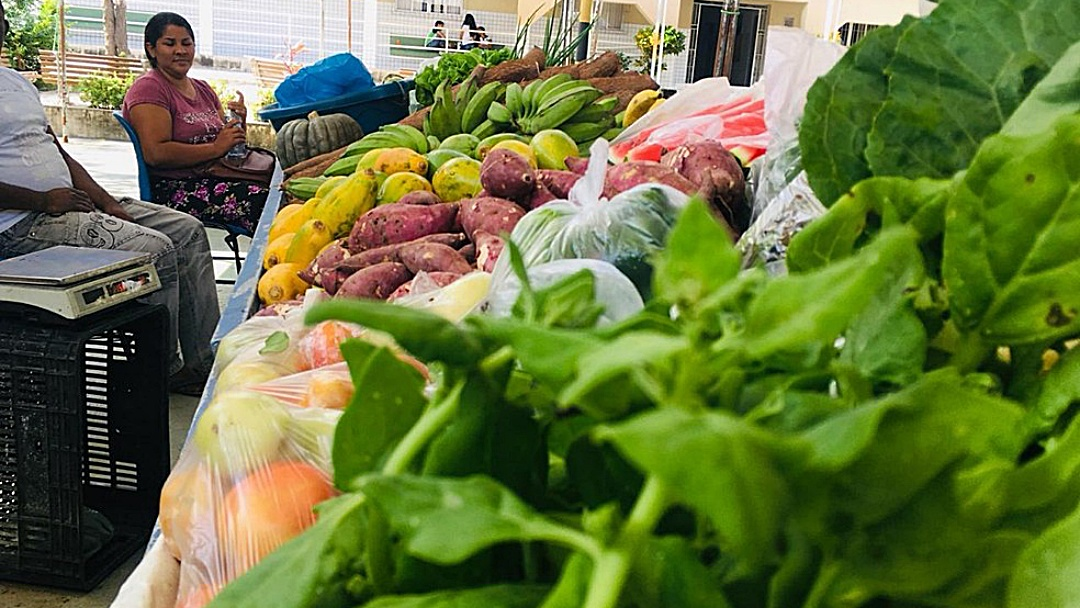 Vespasiano Martins faz chamada pública para aquisição de produtos da agricultura familiar