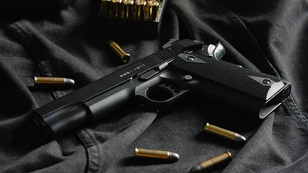 Nº de armas registradas por dia na PF aumenta 8 vezes