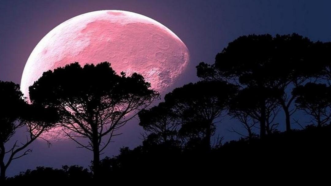Olhe para o céu: fenômeno da Lua Rosa acontece na noite desta segunda