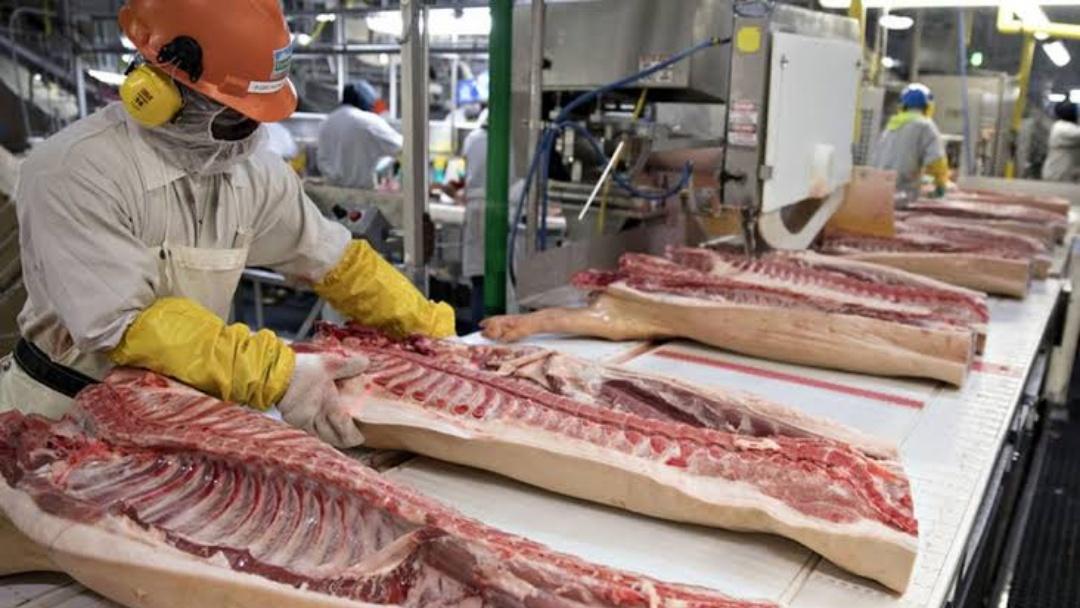 Empresário vai investir R$ 2 milhões na implantação de frigorífico de suínos entre Sidrolândia e Quebra Coco