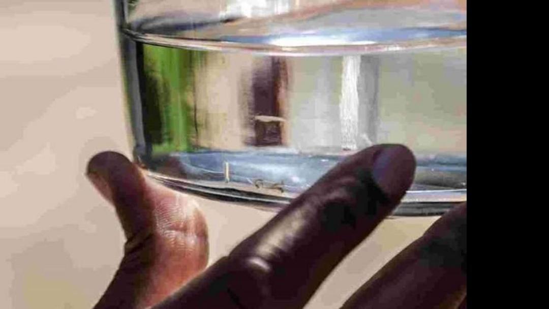 MS e outros estados vão receber larvicida biológico para controle da dengue
