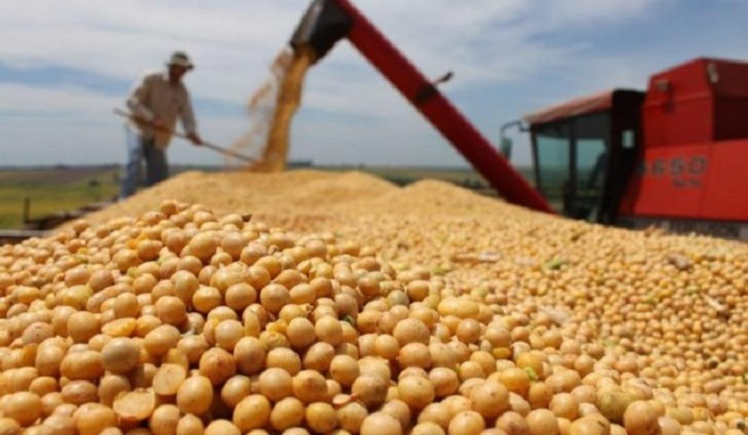 Exportações de MS crescem de janeiro a abril e saldo da balança comercial é de US$ 1,213 bilhão