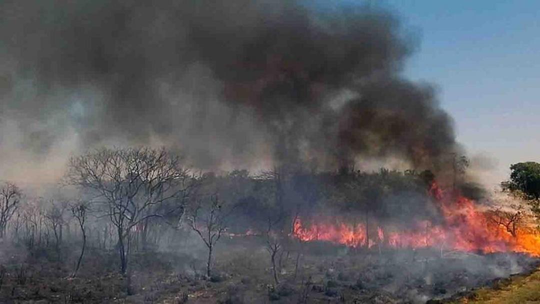 MS tem 'alívio' e número de incêndios cai 70% em 2021; queimadas urbanas também diminuíram