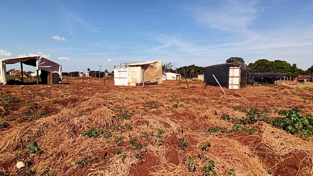 Famílias ignoram liminar e área no Diva Nantes já tem mais de 100 barracos
