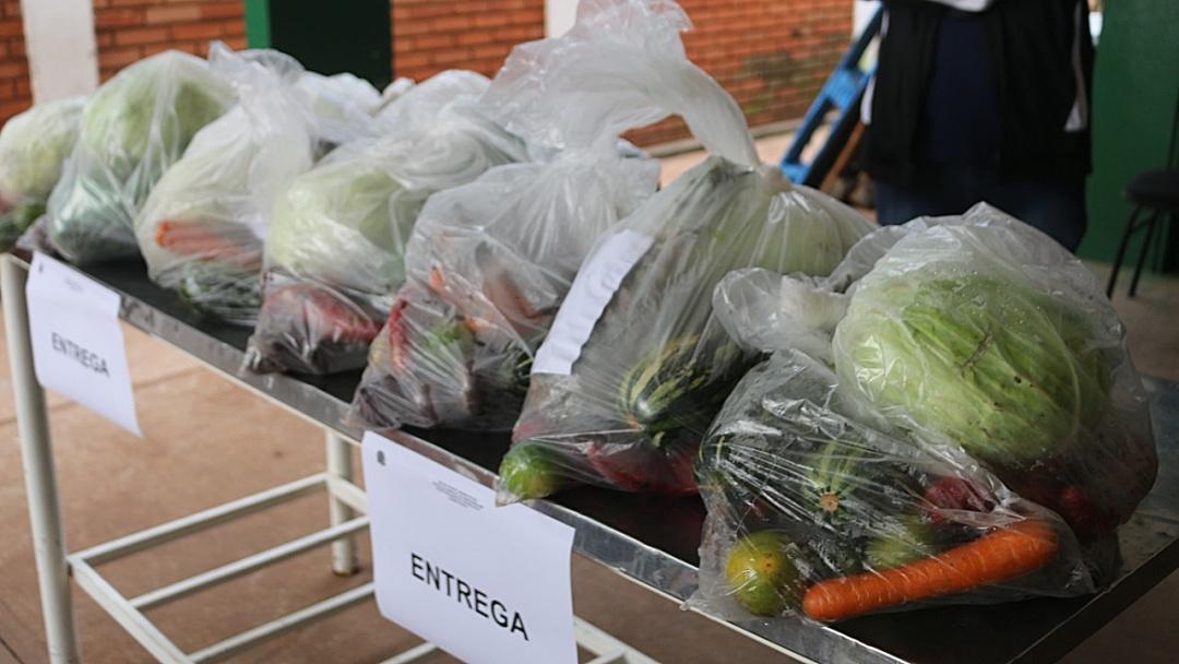 Kit da Agricultura Familiar passa a ser distribuído para alunos