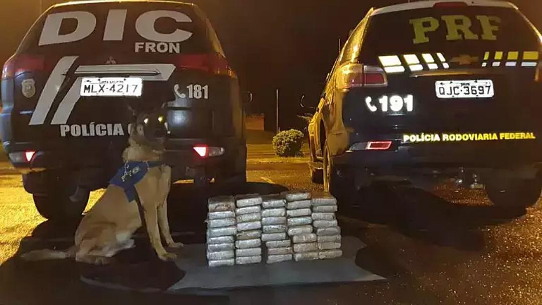 Motorista é preso em SC com R$ 1,8 milhão em cocaína que buscou em MS