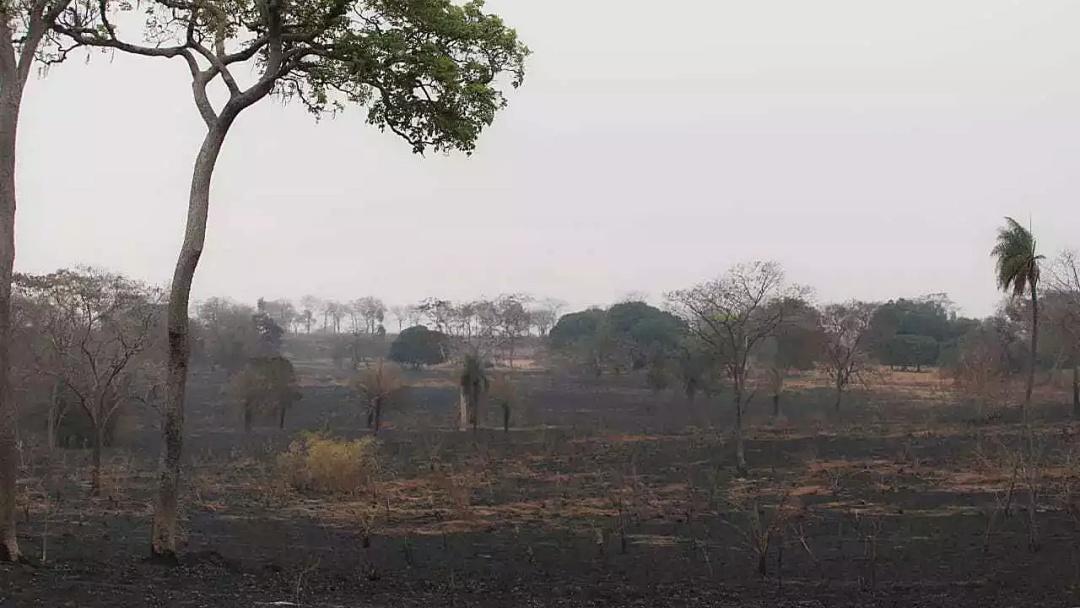 Incêndios no Pantanal reduzem, mas MS se prepara para meses mais secos