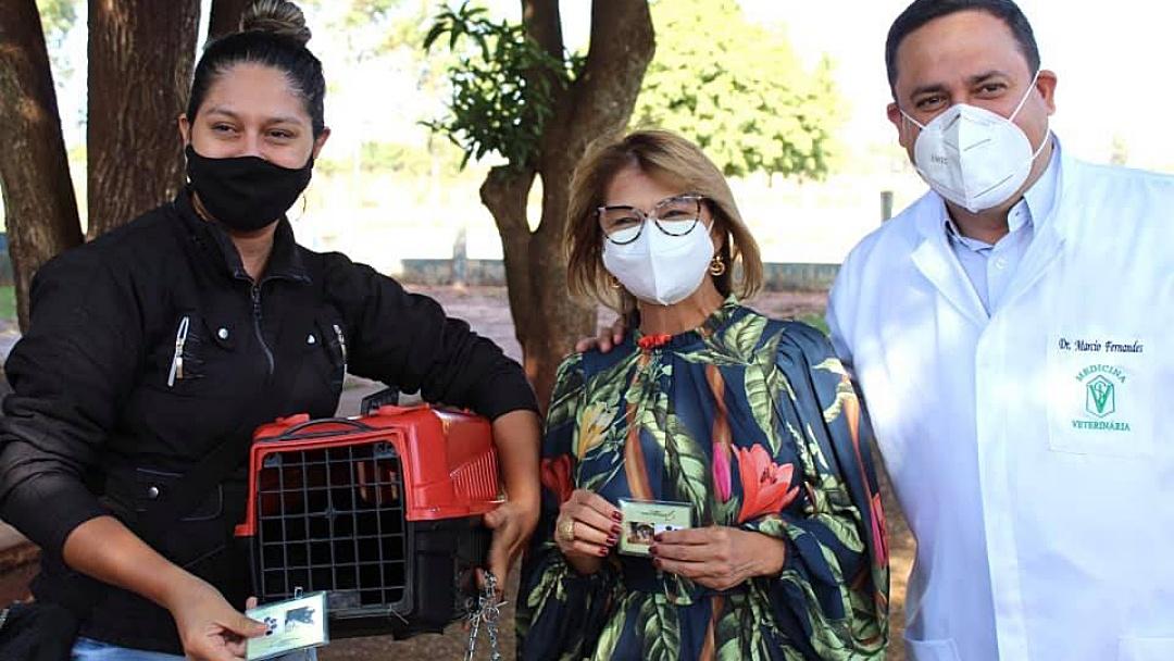 Após 14 meses de entraves burocráticos, Saúde vai iniciar castração de cães e gatos