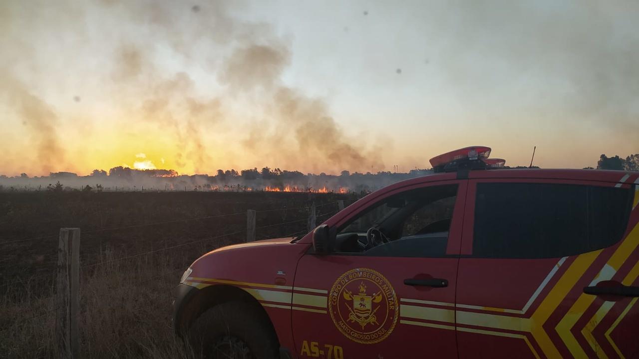 Incêndio de grande proporção destrói vegetação no Eldorado