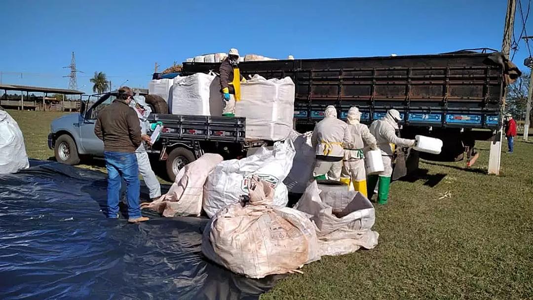 Pequenos produtores entregam 4,9 toneladas de embalagens de agrotóxicos