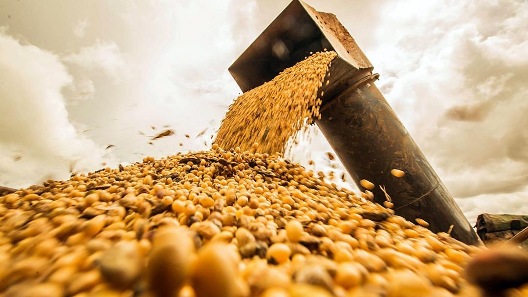 Valor da produção agrícola de MS bate recorde e atinge R$ 29,5 bilhões em 2020